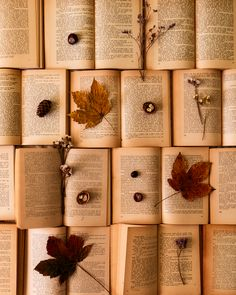 A sea of books #books #booklover Book aesthetic Book wallpaper Book photography