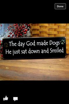 The day God made dogs!