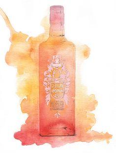 Ceylon Arrack water-colour illustration featured in Hot Rum Cow
