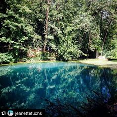 #Repost @jeanettefuchs #insiderei ・・・ Der #Fuschlsee ist nichts gegen den #Blautopf in #Blaubeuren | #JungeDonau #blue #lake #beautiful #nature #naturelover #amazing #seewhatisee #fromwhereistand #travelwithme #germany #hiddengems