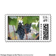 Postage: Grapes on the Vine