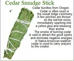 cedar smudge stick--THIS. THIS is what you should be using. Sage is over harvested, while cedar and juniper work just as well and have wider use across several traditions.