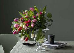 Glass Vase, Plants, Home Decor, Decoration Home, Room Decor, Plant, Home Interior Design, Planets, Home Decoration