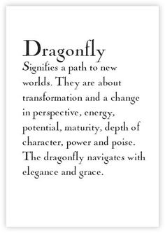 The dragonfly navigates with elegance and grace. #TattooIdeasQuote
