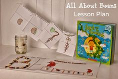 Life With 4 Boys: All About Beans - Plant Growth Lesson Plan