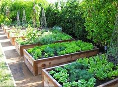 These raised beds look very substantial and I like them very much. The copper edging is a nice touch. Found here (scroll down to last photo).