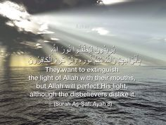 Qur'an as-Saff (The Ranks) 61:8:  They want to extinguish the light of Allah with their mouths, but Allah will perfect His light, although the disbelievers dislike it.