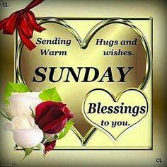 628 Best Sunday Sunshine Images Morning Blessings Sunday Domingo