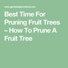 Best Time For Pruning Fruit Trees – How To Prune A Fruit Tree