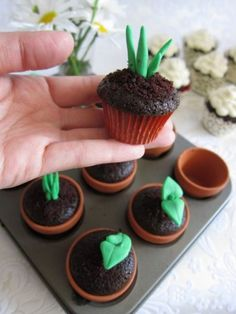 chocolate 'planters' cupcakes with green frosting for leaves. Reminds me of the oreo & candy worms cake from childhood