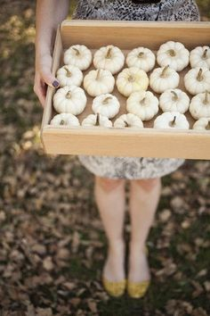 Mini white gourds/pumpkins. darling decor for a fall wedding.