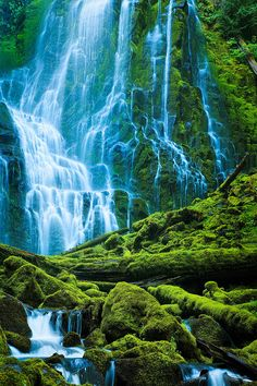 ✯ Lower Proxy Falls in Proxy Falls state park in the Three Sisters Wilderness - Oregon