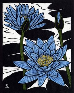 rose linocut | Blue Waterlily - Hand coloured linocut on handmade Japanese paper by Rachel Newling