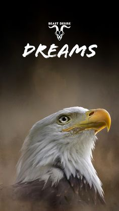 If you have a DESIRE for something in your life and stick to it like a Eagle sticks t its target and dnt stop until and unless you achieve it . Motivational Quotes Wallpaper, Best Motivational Quotes, Wallpaper Quotes, Inspirational Quotes, Lion Quotes, Animal Quotes, One Word Quotes, Me Quotes, Desire Quotes