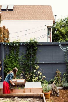 live here courtney kleins edible garden backyard san francisco, ca photo: jamie beck via gardenista Farm Gardens, Outdoor Gardens, City Gardens, Veggie Gardens, Outdoor Spaces, Outdoor Living, Outdoor Decor, Dream Garden, Home And Garden