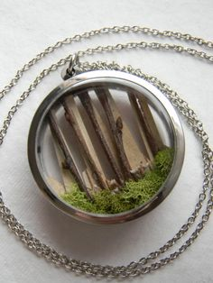 Diorama Locket Necklace... Birch, Woodland, Nature, Firefly Gardens. $25.00, via Etsy.