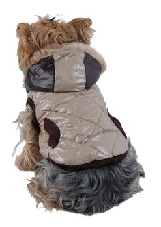 Anima Quilted Jacket with Hood, Small, Tan and Brown -- You can get additional details at the image link. (This is an affiliate link) #CatApparel