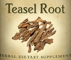 "TEASEL ROOT Need a little limbering up? Give Teasel a try for the relief of minor musculoskeletal discomfort & stiffness. ""Healing Lyme Disease Naturally"" by Wolf D Storl is an excellent reference book. ^"