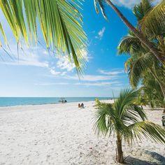 Oubliez la clinquante Miami. La Floride, c'est aussi des îles vertes, certaines désertes, de l'eau chaude, et ce, à moins de quatre heures de vol direct!