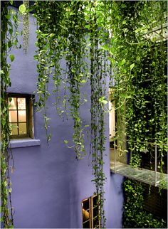 Pieces From Robert Isabell's Collection - The New York Times  Home & Garden  Slide Show  Slide 6 of 18
