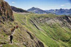 Noch gänzlich unberührte Natur trifft auf volle Aktion! Bergsteigen, Raften, Steinböcke beobachten? Im Sommerurlaub in Osttirol ist alles möglich!
