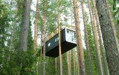 Was kostet ein Baumhaus?
