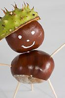 Kastanienmännche - Kinder basteln Figuren aus Kastanien (Malvorlage-bilder.de)