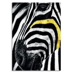 Party wo auch immer….pimp it up!!! Unsere Glasuntersetzer aus Pappelholz sind auch als Postkarte oder Wandbild einsetzbar. Format 10 x 10 cm Rückseite weiss Party Animals, Animal Party, Pimp, New Model, Poster, Beer Coasters, Postcards, Wall Prints, Animales