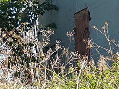AtlanticWall Regelbau L485 - Mammut Radar Bunker Early War… | Flickr #RegelbauL485 #AtlanticWall #AtlantikWall #Bunker #Regelbau #ww #wwii #history #worldwar #military #war #secondworldwar #worldwartwo #germany #wwiihistory #worldwarii #army #s #tank #wwi #reenactment #m #dday #wehrmacht #militaryhistory #tanks #panzer #aviation #memes #usa #usarmy #p #vintage #soldier Abandoned Buildings, Abandoned Places, Bunker Hill Los Angeles, Bunker Home, Supernatural Bunker, Bunker Hill Monument, Doomsday Bunker, Underground Shelter, Desert Places