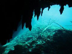 Curso de buceo en caverna - Cavern Diver : El primer paso para conocer el buceo…