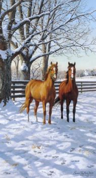 'Coffee and Chocolate in the Morning' by Persis Clayton Weirs adorables funny graciosos hermosos salvajes tatuajes animales Cute Horses, Pretty Horses, Horse Love, Beautiful Horses, Painted Horses, Horse Drawings, Animal Drawings, Horse Artwork, Cowboy Horse