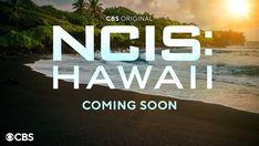 Le monde de NCIS va s'agrandir dans les années à venir, puisque CBS a officiellement renouvelé NCIS : Los Angeles et a commandé une nouvelle série, NCIS : Hawaii, pour une sortie future. NCIS : Hawaii sera la première franchise NCIS à présenter un rôle principal féminin. Quant à NCIS : Los Angeles, il s'agira de la 13e saison de ce programme de longue haleine, qui ne semble pas près de s'arrêter. #NCISHawaii #NCISLosAngeles Ncis Los Angeles, Hawaii News, Ll Cool J, Pearl Harbor, Special Agent, Dancing With The Stars, Beginning Sounds