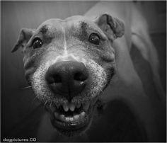 mah happy face