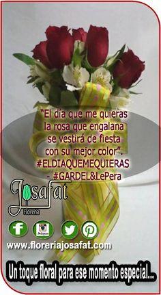 Síguenos en Pinterest!!  El día que me quieras la rosa que engalana se vestirá de fiesta con su mejor color. #ELDIAQUEMEQUIERAS - #GARDEL&LePera  The day you want me The rose that adorns will dress party with her best color. #THEDAYTHATIWANT - #GARDEL&LePera  www.floreriajosafat.com @Florería Josafat #floreriajosafat