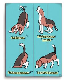 The body language of beagles.