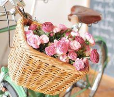 Χάσαμε τα λουλούδια από το πανέρι μας, ας μη χάσουμε και τα λουλούδια από τις ψυχές μας.... Ίσως πολλοί από μας χωρίς να το θέλουμε, καταντήσαμε τη ζωή μας ένα σιδερένιο ποδηλατάκι.... έχει πεντάλ κι είναι ακίνητα, έχει ρόδες, αλλά είναι στάσιμες.... έχει μια σέλα και καθόμαστε εκεί χωρίς να μπορούμε να απολαύσουμε, ούτε μια ορθοπεταλιά.... Μοιραία ανθρωπάκια είμαστε και πορευόμαστε με μια μοιραία παράνοια, μέσα στο μοιραίο και καταστρεπτικό εγώ μας.... και τα ξέρω όλα, της αλαζονείας…