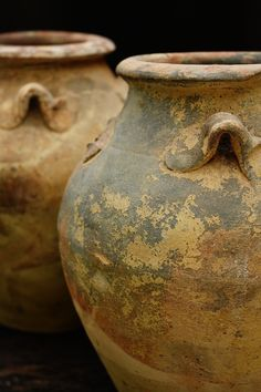 Containers, love the aged terracotta pots