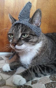 Shark Cat Hat by StitchedAdventures on Etsy