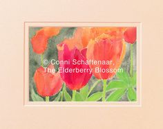 Instant Download 5x7 Print from Watercolor Painting Orange and Red Tulips for matting and framing