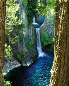 Toketee Falls, North Umpqua; one of the most beautiful of the fifteen waterfalls located along the North Umpqua Scenic Byway.