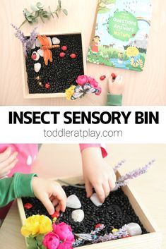 Simple sensory bin idea using black beans and a few add-ins like toy bugs, artificial flowers and rocks. Sensory Activities For Preschoolers, Fine Motor Activities For Kids, Spring Activities, Toddler Activities, Preschool Activities, Sensory Bins, Sensory Play, Toddler Crafts, Crafts For Kids