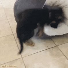 Tricky Bed