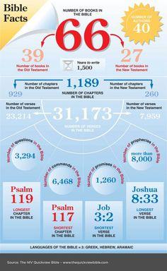 Feiten over de Bijbel. Bible facts infographic