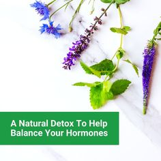 Homeopathic remedies stimulate and promote the body's own natural elimination and detoxing process in a deep & powerful way. The homeopathic detox is designed to be gentle and is tailored to your needs and does not involve practices such as juicing or fasting. Click here to read more #naturaldetox #detox #hormones #hormoneimbalance #hormonesupport #hormonebalance #estrogen #infertility #fertility #pcos #fibroids #periodproblems #endometriosis #moodswings #menopause #homeopathy… Homeopathic Pharmacy, Homeopathic Remedies, Pcos, Emotional Stress, Stress And Anxiety, Post Natal Care, Tissue Salts, Natural Body Detox