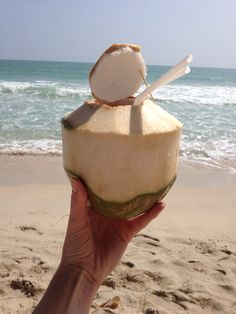 I'm in love with the coco ! Camembert Cheese, Dairy, Coconut, Fruit, Travel, Food, Meal, The Fruit, Eten