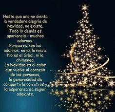 Las Mejores Felicitaciones De Navidad 2019.267 Mejores En Mensajes Navidenos En 2019 Mensaje Navideno