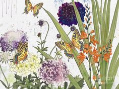 Washy Watercolor Painting - Florals And Butterflies-jp3833 by Jean Plout