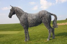 Wired horse