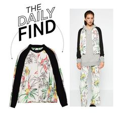 """""""The Daily Find: Zara Printed Bomber Jacket"""" by polyvore-editorial ❤ liked on Polyvore featuring DailyFind"""