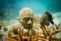 Para Ver o Mundo   Esculturas Ganham Vida Sob O Oceano. Esculturas Subaquáticas de Jason deCaires